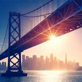 Bridge 365